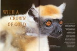 Article First Page: Africa Geographic: December 2002/Ja...