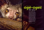 Article First Page: Africa Geographic: February 2009; V...