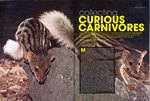 Article First Page: Africa Geographic: November 2010; V...