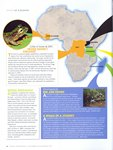 Article: Africa Geographic: December 2010/Ja...
