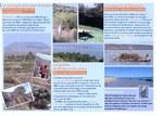 La montagne de la table Andatabo; Les grottes de Binabe et Sarodrano; La presqu'�le de Sarodrano; La baie de Saint Augustin; Aux portes de Tul�ar, l'Aire Prot�g�e de Tsinjoriake s'ouvre � l'�cotourisme