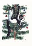 Front: Black-&-White Ruffed Lemur: Varecia...