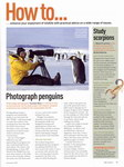 Article: BBC Wildlife: December 2007, Volume...