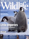 Front Cover: BBC Wildlife: December 2007, Volume...