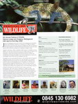 Article First Page: BBC Wildlife: Summer 2007, Volume 2...