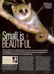 Article First Page: BBC Wildlife: July 2008, Volume 26,...