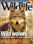 Front Cover: BBC Wildlife: July 2008, Volume 26,...