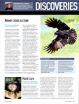 Article: BBC Wildlife: November 2010, Volume...