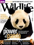 Front Cover: BBC Wildlife: December 2010, Volume...