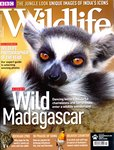 Front Cover: BBC Wildlife: February 2011, Volume...