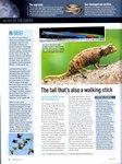 Article: BBC Wildlife: May 2011, Volume 29, ...