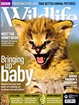 Front Cover: BBC Wildlife: May 2011, Volume 29, ...