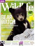 Front Cover: BBC Wildlife: May 2012, Volume 30, ...