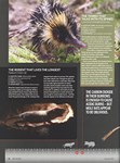 Article: BBC Wildlife: January 2014, Volume ...