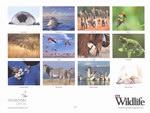 Back Cover: BBC Wildlife Calendar 2010