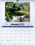 January Page: Madagascar 2005 Calendar: Images of...