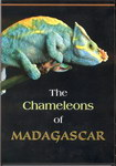 Front of Box: The Chameleons of Madagascar