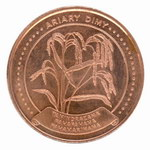 Front: 5 Ariary Coin: (25 Malagasy Francs)
