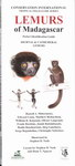 Front Cover: Lemurs of Madagascar: Diurnal & Cat...