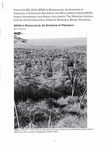 First Page: REDD In Madagascar: An Overview of ...