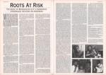 Article: Folk Roots: May 1991; No. 95