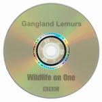DVD Face: Gangland Lemurs