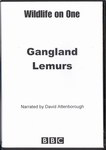 Front of Box: Gangland Lemurs