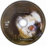 DVD Face: The Marvels of Madagascar