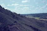 Image: Woods around Ambositra