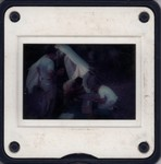Slide Frame: Examining zoological specimens at t...