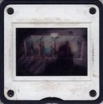 Slide Frame: Zoological specimens at the campsit...