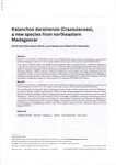 First Page: Kalanchoe darainensis (Crassulaceae...
