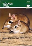 Front Cover: Zeitschrift des Kölner Zoos: Nr 3/2...