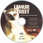 DVD Face: Lemur Street