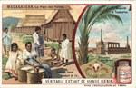 Front: Femmes Hovas vendant du riz / Mauso...