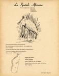 11. La Spatule Africaine / 12. L'Ibis Falcinelle
