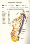 Map: Madagascar Par Sa Flore