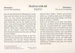 Back: Mananjary: Fest der Beschneidung / ...