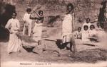 Madagascar: D�quipage du Riz