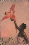 Front: 10. Madagascar - Femme au perroquet...