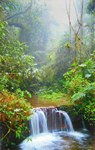 Waterfall in Ranomafana National Park