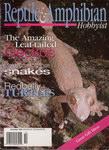 Front Cover: Reptile & Amphibian Hobbyist: Novem...