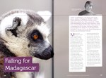 Article First Page: Rainbow Tours: Africa & Madagascar ...
