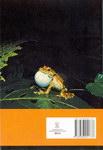 Back Cover: Ireo Sahona Tandindomin-doza Eto Ma...