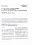 Molecular Phylogeny of Malagasy Poison Frogs, Genus Mantella (Anura: Mentellidae)
