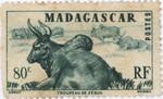 Zebu: 80-Centime Postage Stamp