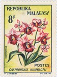 Gastrorchis humblotii: 8-Franc Postage Stamp