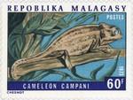 Chameleon campani: 60-Franc Postage Stamp