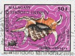 Front: Lambis chiragra: 50-Franc Postage S...