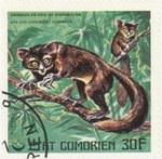 Aye-Aye Lemur: 30-Franc Postage Stamp